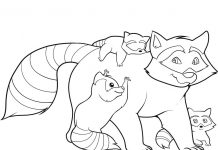 Racoon Colouring Pages