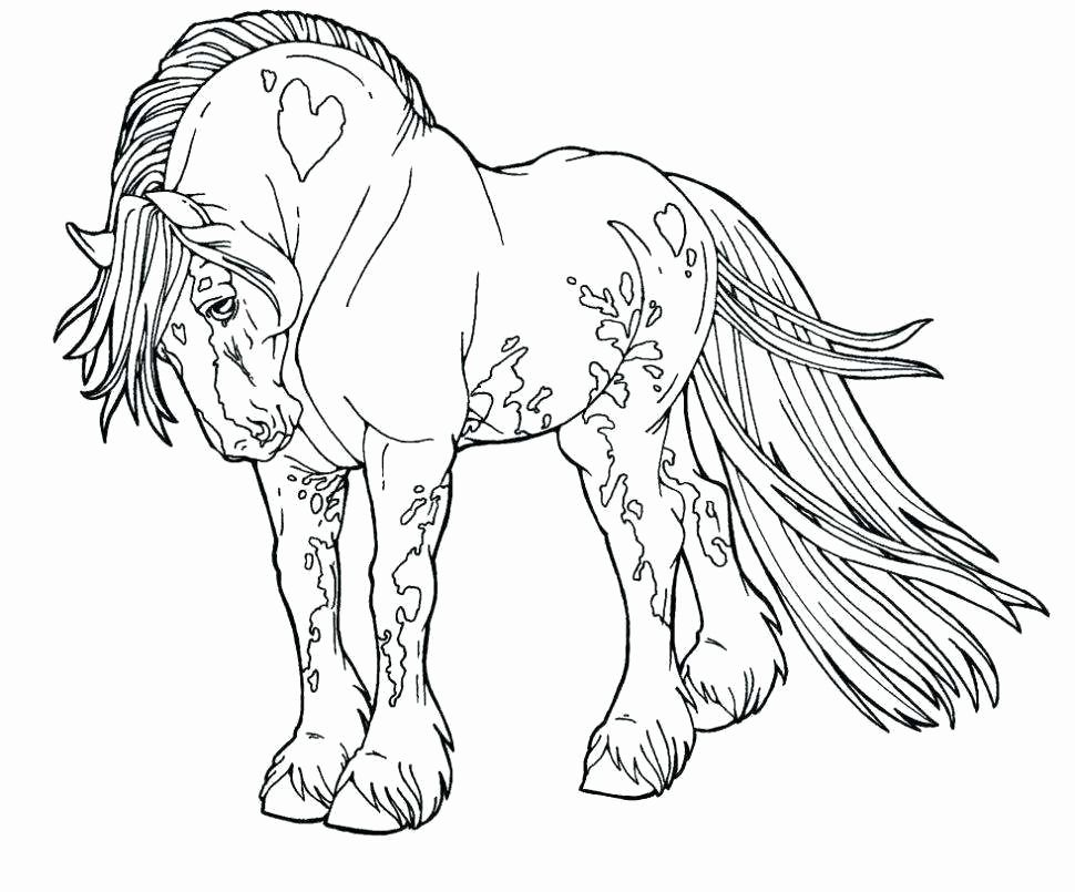 elegant coloring pages horse to print of coloring pages horse to print