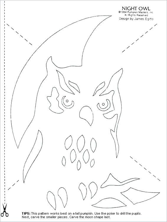 lovely coloring pages larva for kindergarden